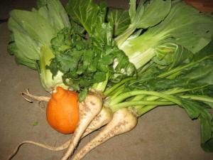 A few items from our weekly CSA delivery