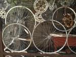 Coop a la Cyclist
