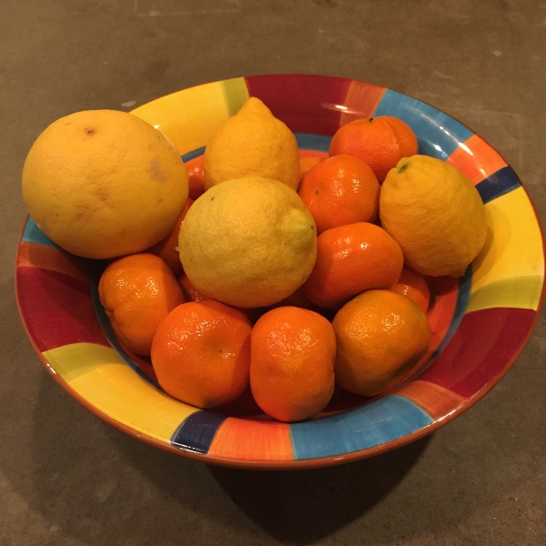 Spoiled by the Abundance of Citrus